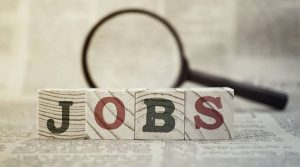 Govt to conduct annual job survey, labour bureau study not realistic: Panagariya
